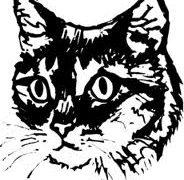 Buddhist Views On Cat-Neutering 从佛教观点谈为猫绝育