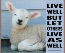 Live And Let Live!