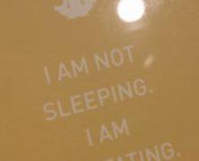 Sleeping Meditation?
