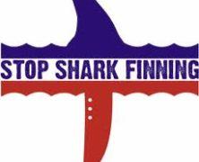 Dissuading Against Shark-fin Consumption