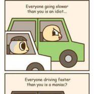 Slow Idiots Vs Fast Maniacs