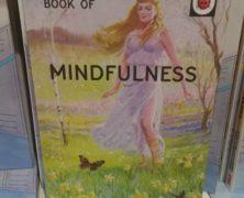 Mindless Metta