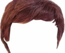 Wig: Super Short Story #448