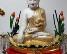 Cheery Buddha