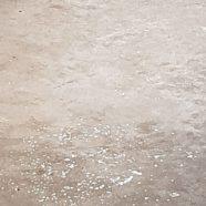 Cement: Dharmagram #45