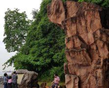 Rock: Dharmagram #122