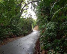 Island: Dharmagram #137