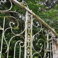 Fence: Dharmagram #138