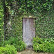 Door: Dharmagram #141