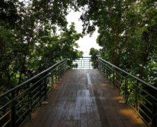 Corridor: Dharmagram #165