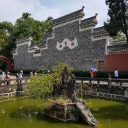 Pond: Dharmagram #185