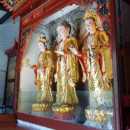 Saints: Dharmagram #194