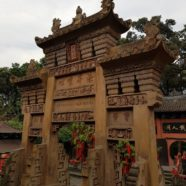 Entrance (1): Dharmagram #238