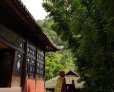 Shelter: Dharmagram #293