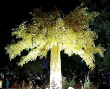 Tree: Dharmagram #294